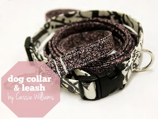 dogcollar&leash-feat
