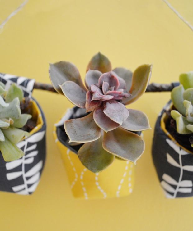 SucculentWallPlanters2-Pellon